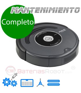 Cleaning and maintenance service full Roomba (Spain)